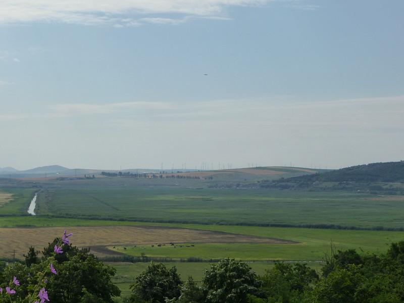 Tulcea region