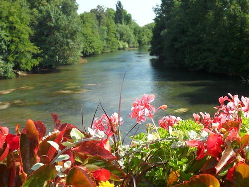 Rivière Le Clain 2