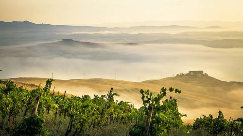 Tuscany by David Butali