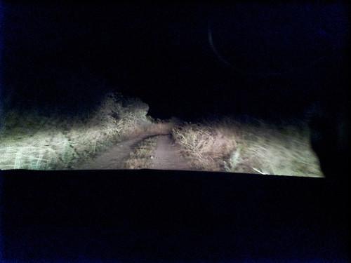 Éjszaka a rövidebb úton