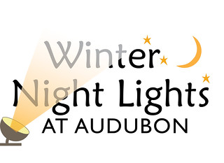 Winter Lights logo