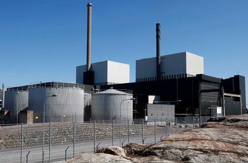 Волна медуз остановила реактор на АЭС Оскарсхамн в Швеции