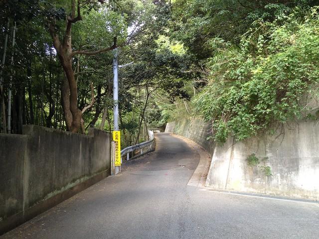 六甲山 ロックガーデンへの道