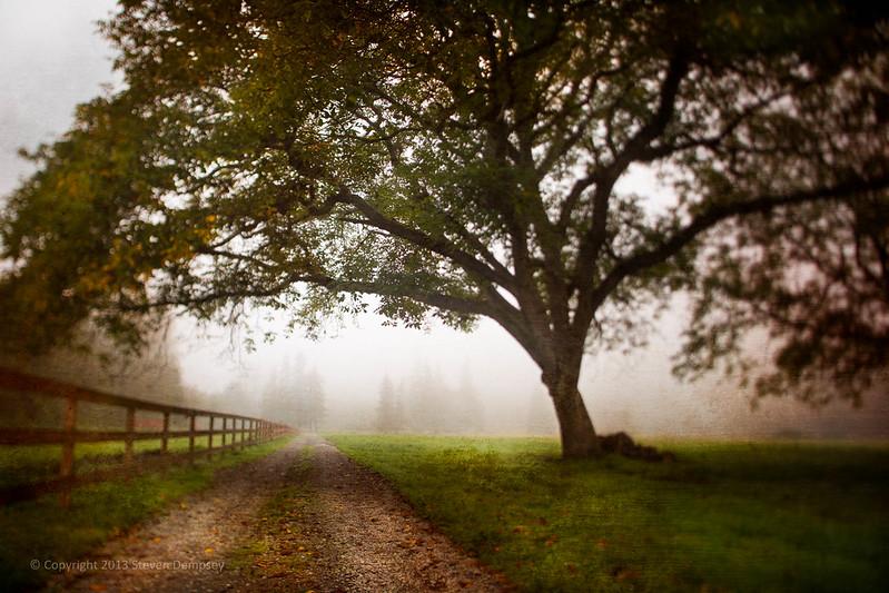 IMAGE: http://farm4.staticflickr.com/3823/10257735496_df96a004b8_c.jpg