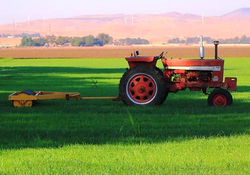 Old Trusty Red Farmall