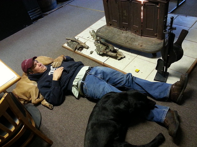 wine maker and dogs 2