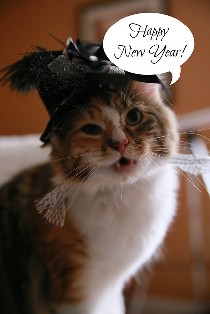 happy new year from the cat with the fancy hat