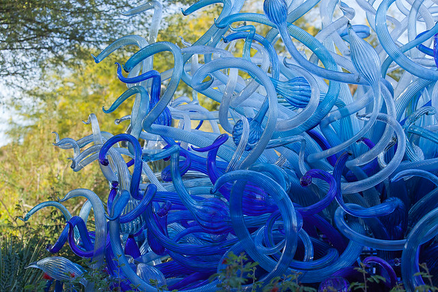 Blue Fiori Sun, 2013