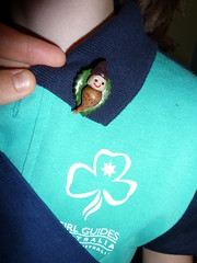 Girl Guides 'Red Gum' Badge 2010