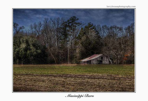 winter sky tree green field horizontal barn rural mississippi landscape hdr 2014