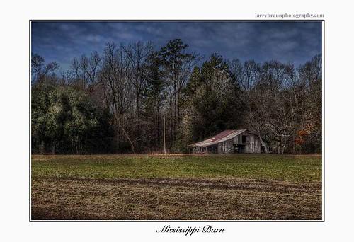 winter sky tree green field horizontal barn rural mississippi landscape hdr 2014