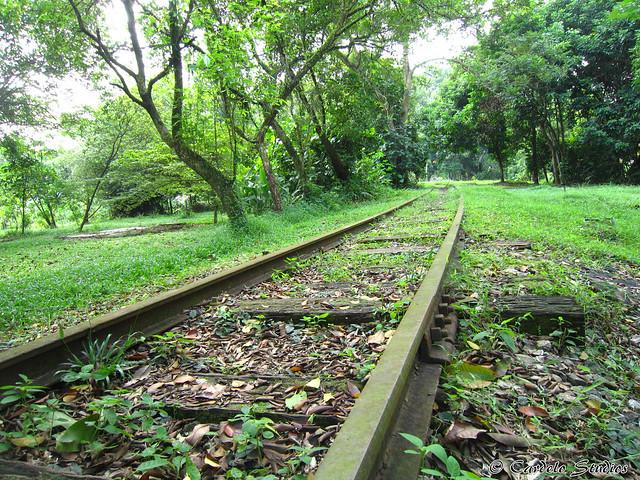 Old Jurong Line 01