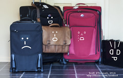 car seat(0.0), brand(0.0), bag(1.0), luggage & bags(1.0), purple(1.0), handbag(1.0), hand luggage(1.0), baggage(1.0), suitcase(1.0),