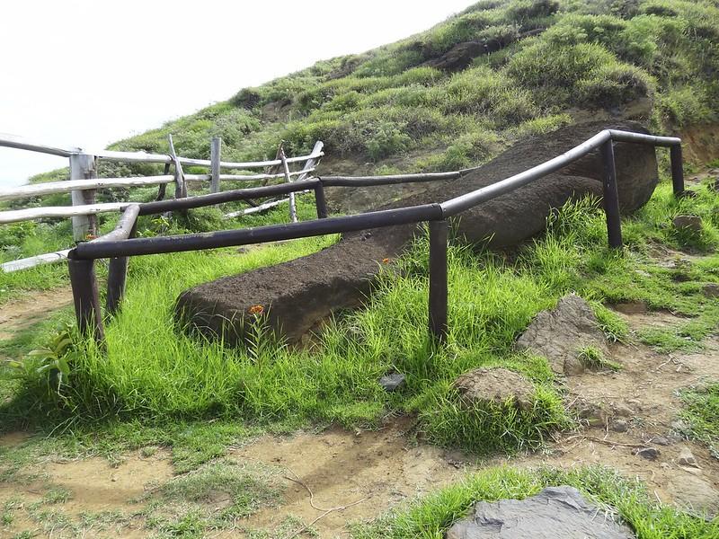 Easter island 24 116