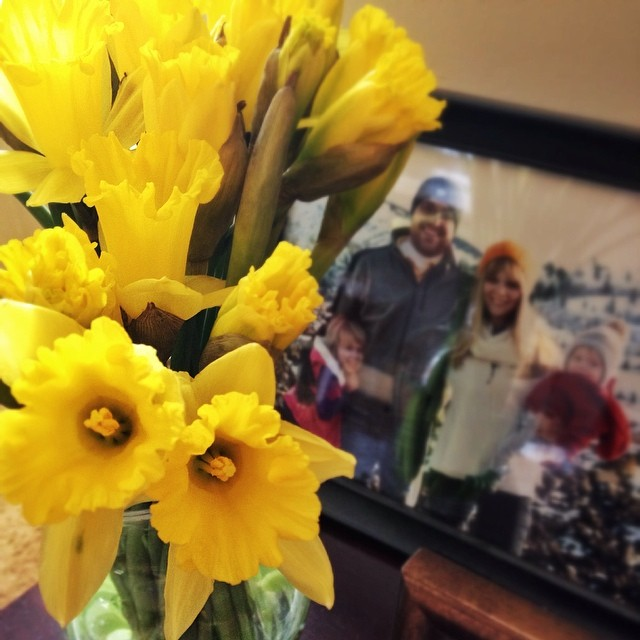 Spring blooms are the best! #365grateful #yellow #spring #happy #love #color #home #flower #daffodil