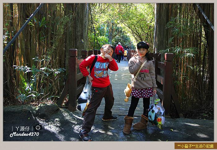 木柵動物園(圓仔)19