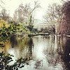 Not as bright today but Stephen's Green is still looking #Beautiful #Park #Dublin #water #Ireland #city #Enjoyyourcity #PictureThis   More on www.picturethisdublin.com by tweetymonkey