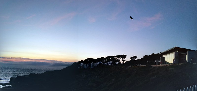 hawk × phone made this panorama thing after we left. awesome sunset/walk/time sunday w los ochans.