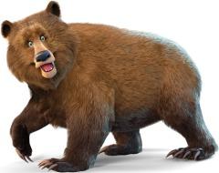 Yeddy - Himalayan Brown Bear