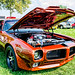 Log Cabin Days Car Show 2014
