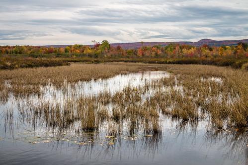 canada quebec lac lake brome estrie