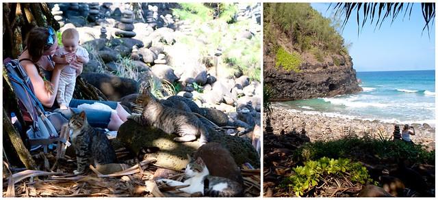 kauai trail 4