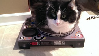 Josie on the DJ scratcher