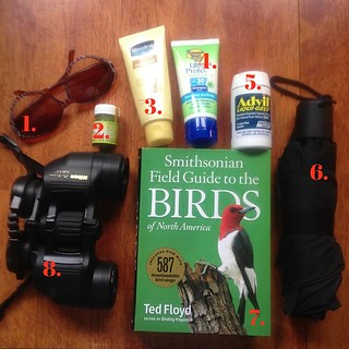 June 29 : in my bag #birdingessentials - binoculars, bird guide, umbrella, sun screen, Advil, mosquito repellent, moisturizer, sunglasses. So gu niang!