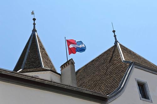 Fish Flag