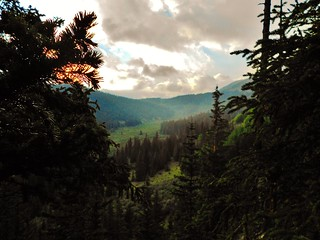 View Towards Guanella Pass