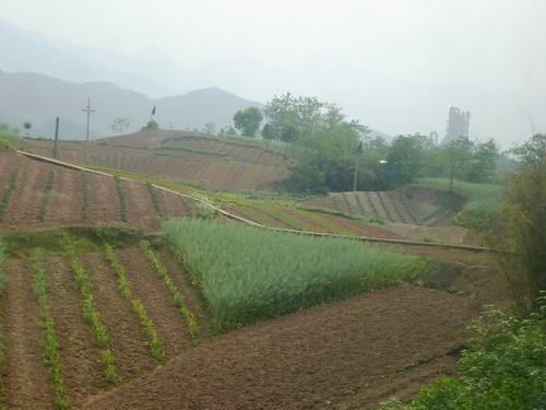 Hubei13-Wuhan-Chongqing-Chongqing (11)