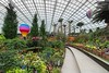Gardens by the Bay, Singapore by jermark