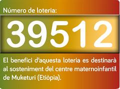 afne-plafon-loteria retallat 2013