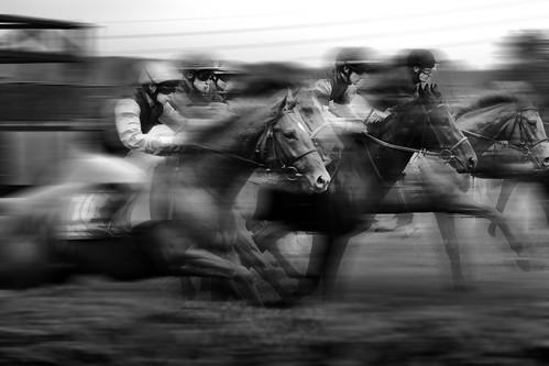 Pure Horsepower