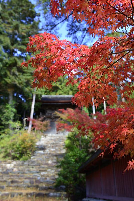 2013.11.13京都 神護寺