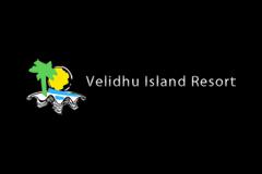 访问维利多岛专属页面