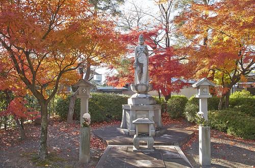 【写真】2013 紅葉 : 妙顕寺/2020-11-01/IMGP4135