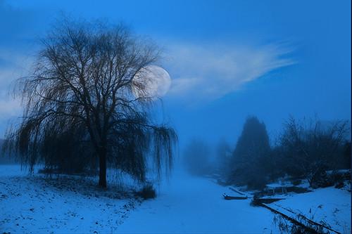 Winter Evening (Explore(d)