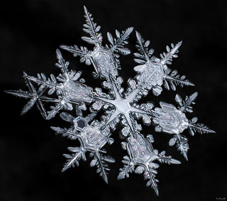 Starburst, real snowflake macro photo by Don Komarechka