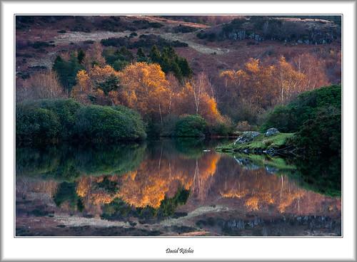 autumn rural sunrise landscape dawn scotland kilmacolm inverclyde knappsloch