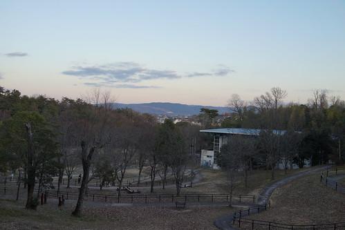 140211 大渕池公園