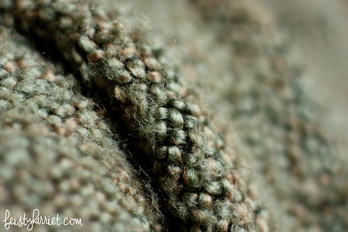 Macro_Texture 2_Feisty Harriet_Feb2014
