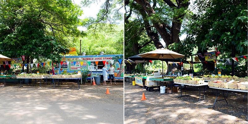 Olowalu Juice Stand Produce