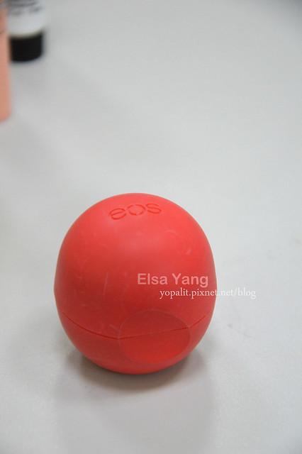 ELSA-photo07