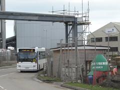 Libertybus 507