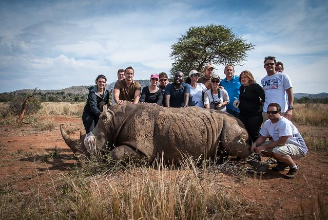 us with rhino