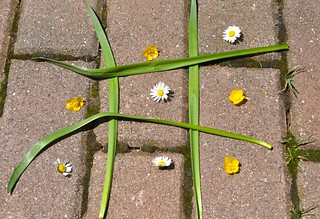 Botanical Tic-Tac-Toe