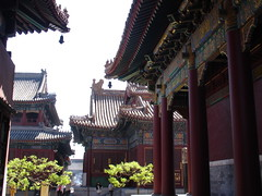 Beijing 2009