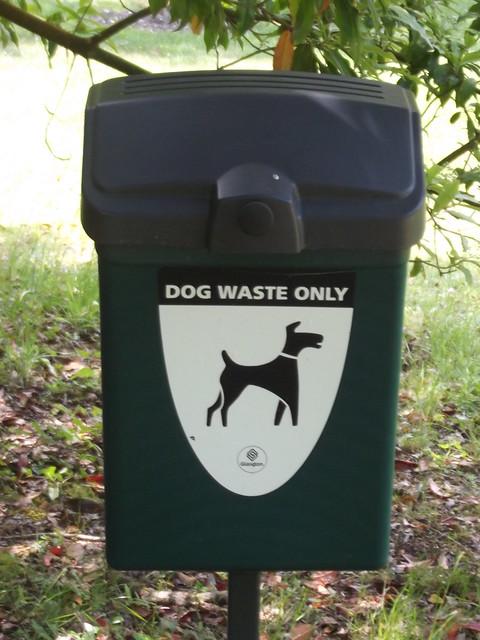 Dog Waste Water Pollution Wildlife Trust Uk