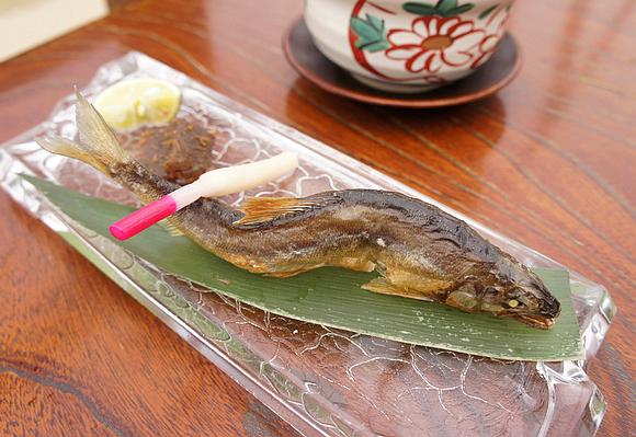 京都美食納涼床22